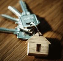 Как купить квартиру в ипотеку в россии пошаговая инструкция