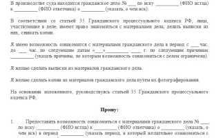 Заявление об ознакомлении с материалами дела