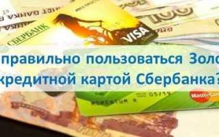 Как пользоваться кредитной картой виза голд от сбербанка